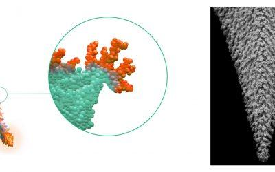A Breakthrough Technology For Semiconductor Nano-Characterization